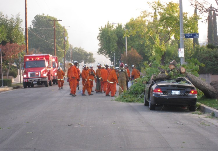 LAFD, Los Angeles, Fire Department, Los Angeles County Fire Department, Sayre Fire, Sylmar, California 2008