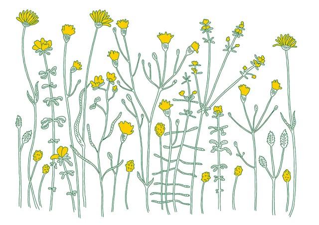 Blooming TrendRaider