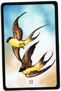 12 pássaros