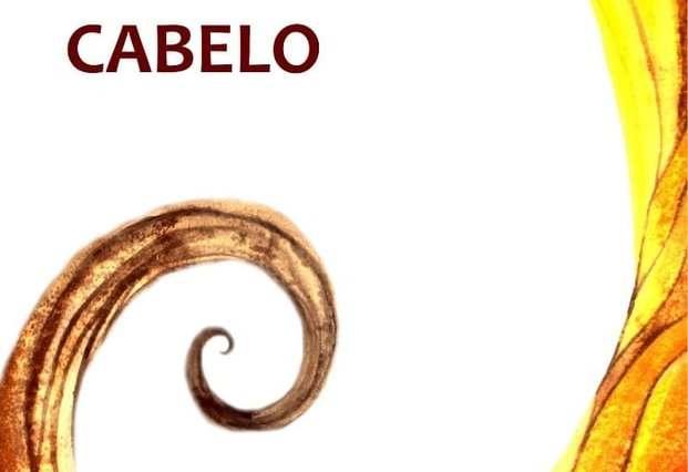 a verdade sobre seu cabelo felipe restini MLB F 2957645848 072012 - Dica de Livro: A Verdade Sobre seu Cabelo