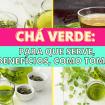 Como Escolher o Shampoo Certo 3 - Chá Verde: Para Que Serve, Benefícios, Como Tomar