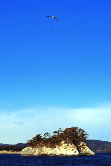 Island in Matsushima Bay