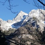 mountains-and-trees-1-web