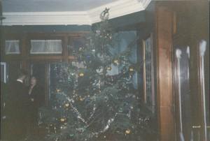 Christmas Tree, Compliments of Mount Royal