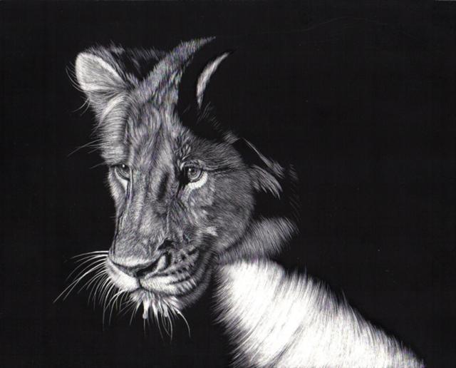 Lion_03 (Small)