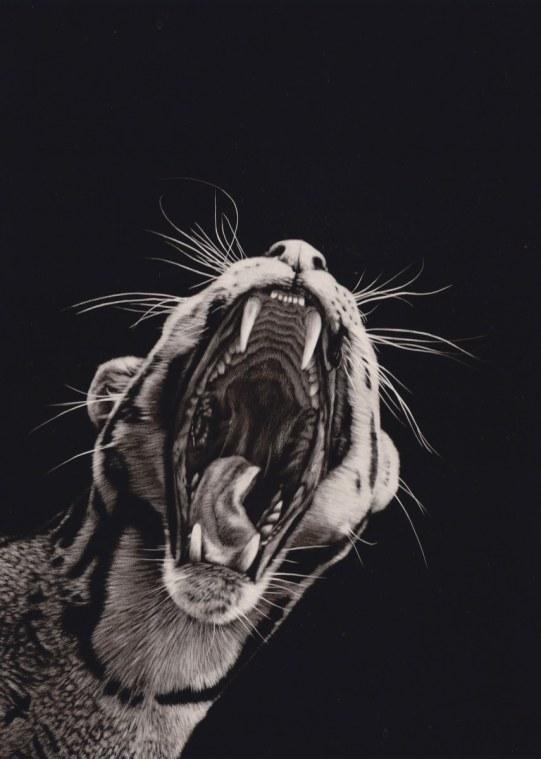 """Clouded Leopard"""