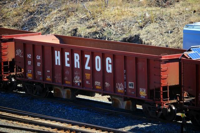 HERZOG train car