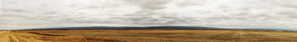Riding Mountain panorama