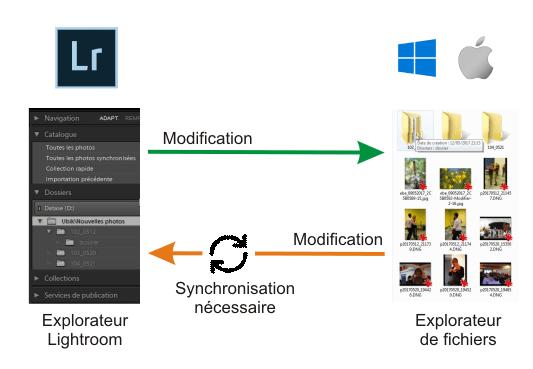 Synchro LR - Windows.