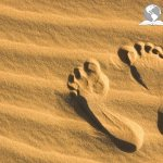 Chosen generation showing foot prints