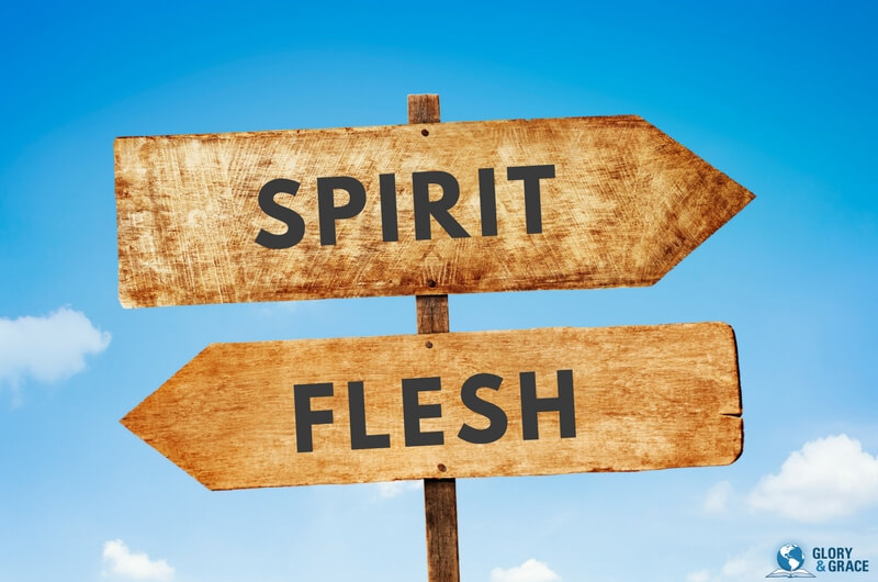 leadership of  the spirit showing signs of spirit and flesh