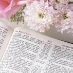 Memorizing the Bible showing an open Bible