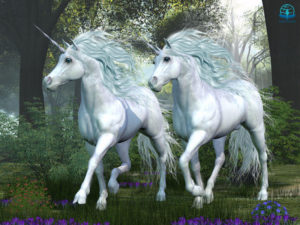 Unicorn pictures showing two white unicorns