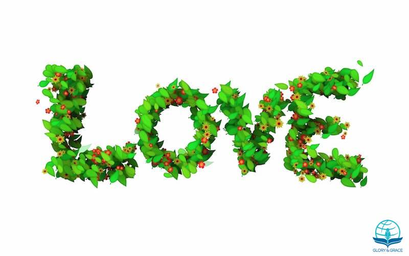 What is love images showing the letters of love spelled with leaves