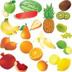 What is the fruit of the Spirit showing different types of fruit