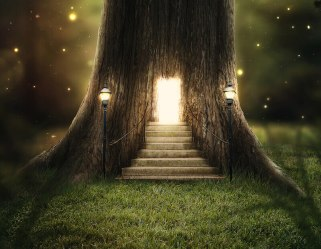 Divine visitations showing a house in a tree with light