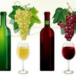new wine requires new bottles