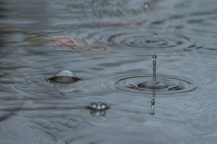 pluie (1 sur 1)