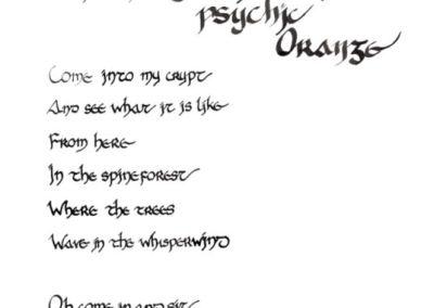 Still Negative of a Psychic Orange
