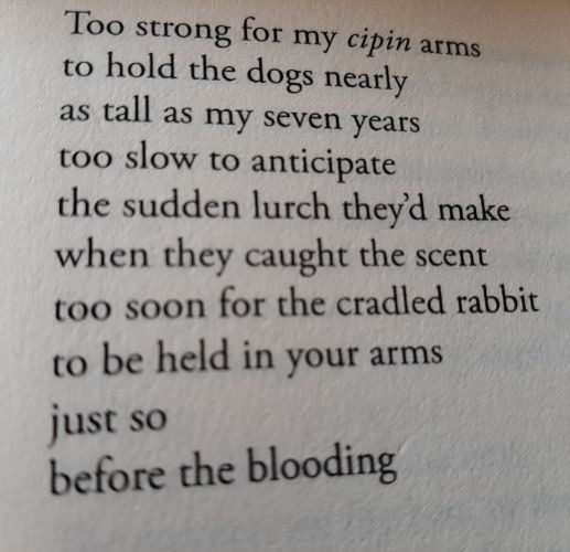 The Blooding (first stanza) by Patrick Stack