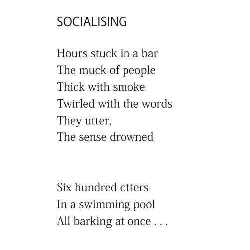 Socialising by Patrick Stack