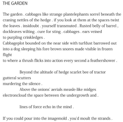 The Garden by Patrick Stack