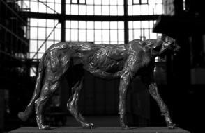 3D project cheetahs ©2015