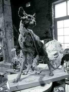 Naked Cat 47x48cm in the studio
