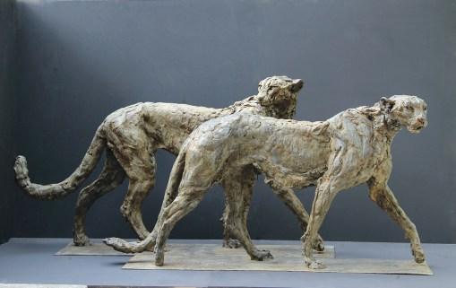 Cheetahs 128x66-120x60cm 1/8 ©2012