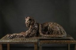 Leopard 116x40cm 1/8 ©2015