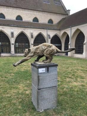 Zoo Jaguar - Compiègne Exhibition Summer 2016