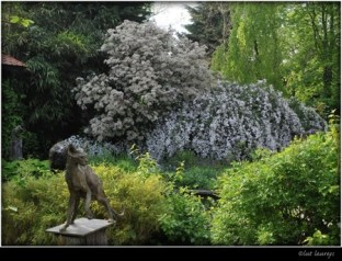 Naked Cat at the garden exhibition Latem Gallery ©2014