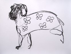 Small Domestic Dog 65x45cm charcoal on paper ©2013