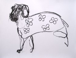 Small Domestic Dog (sold) 65x45cm charcoal on paper ©2013