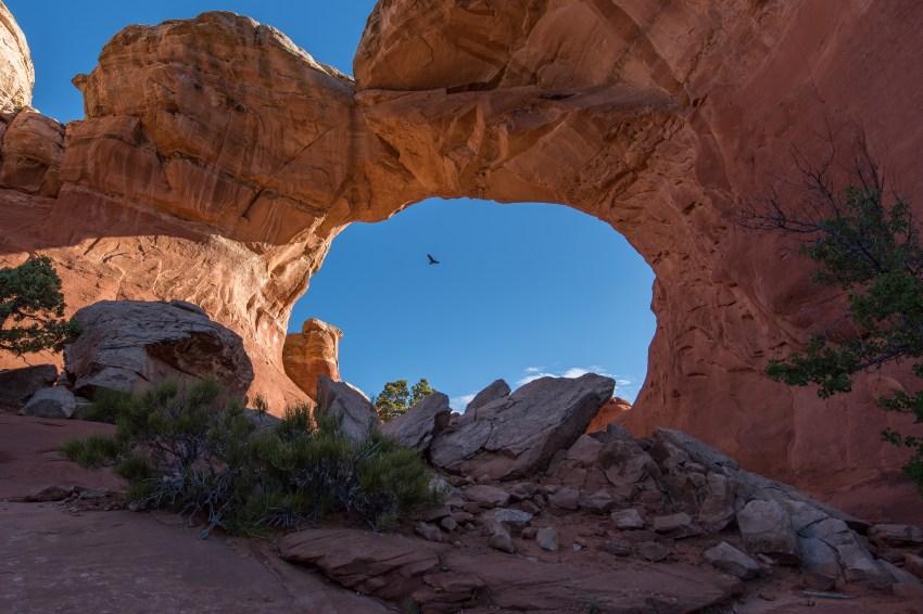 Einer der vielen Arches im Nationalpark