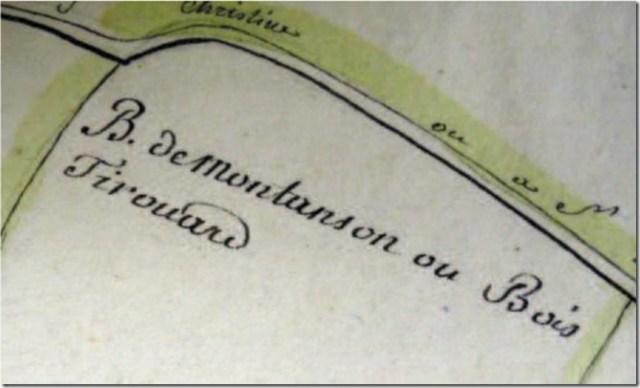Bois de Tirouard, commune de Moléans (28)
