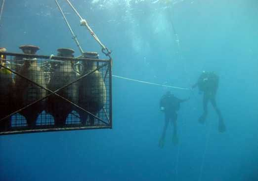 La Vila se ofrece para ser sede o delegación autonómica de arqueología subacuática