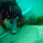 El pecio de Ribadeo: ¿un galeón mediterráneo?