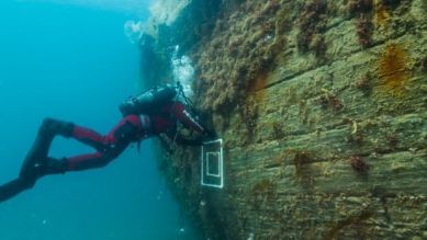 Marc-André Bernier, Parks Canada's manager of underwater archelogy, sets a marine biology sampling quadrat on the port side hull of HMS Erebus. (Parks Canada)
