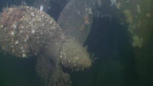 La hélice del submarino hundido en abril de 1940- JD Contractor