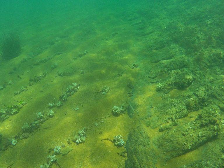 Hallan en Dénia los restos de un barco corsario francés hundido en la Guerra de la Independencia