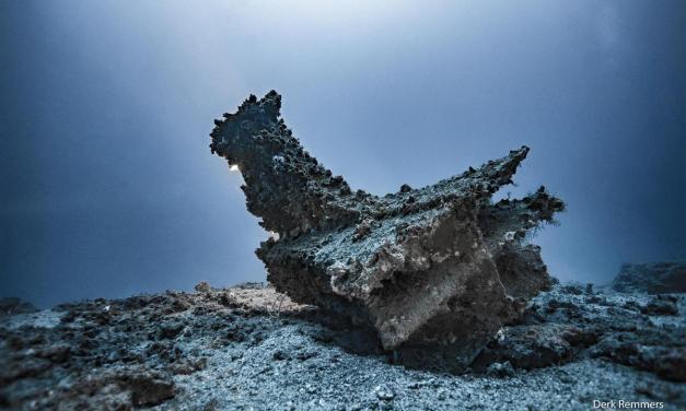 Hallan espolones y cascos de bronce de la batalla naval de las islas Egadas