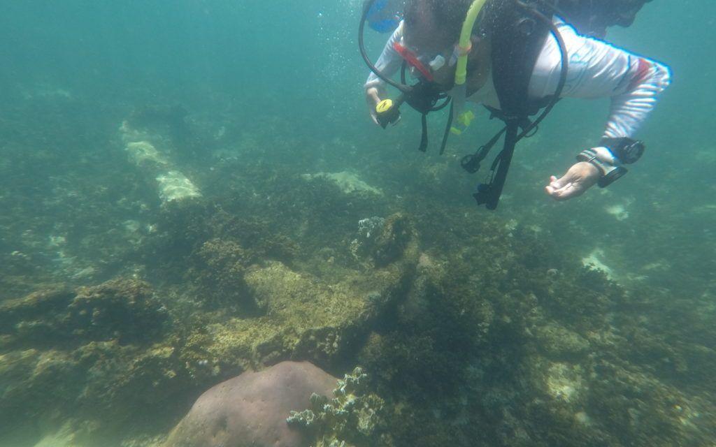 Jóvenes del Caribe Sur cuidan patrimonio en el fondo del mar y recuperan su historia perdida