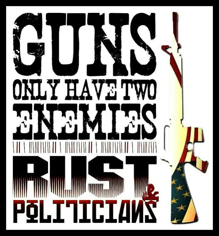 The two enemies of guns are rust and politicians