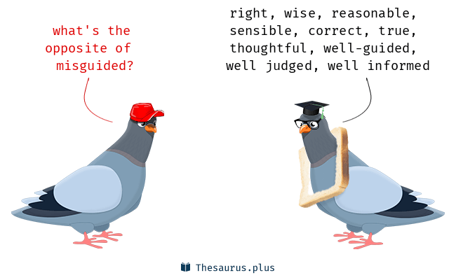 A pigeon asking about what the opposite of misguided is.