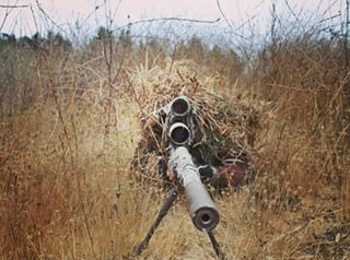 sniperingrass