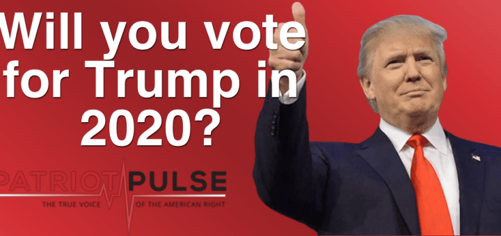 Image result for Would you vote for President Trump in 2020?