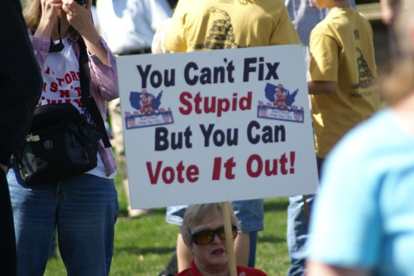 you-can-vote-out-stupid-2