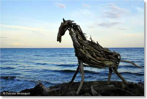6 - cavallo