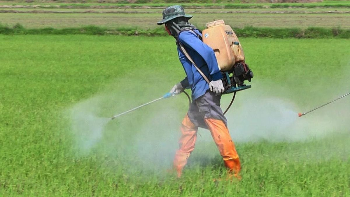 Toxic Farm Chemicals Used To Cultivate Thai Food Claim Lives Already!